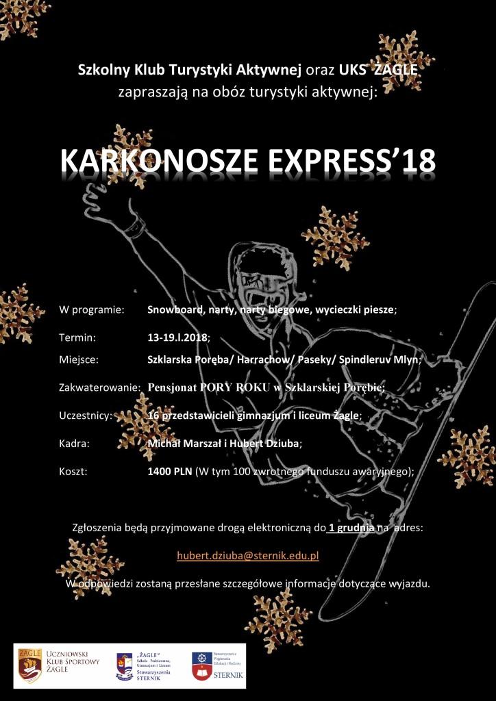 Obóz zimowy 2018- Plakat z płatkami czarny