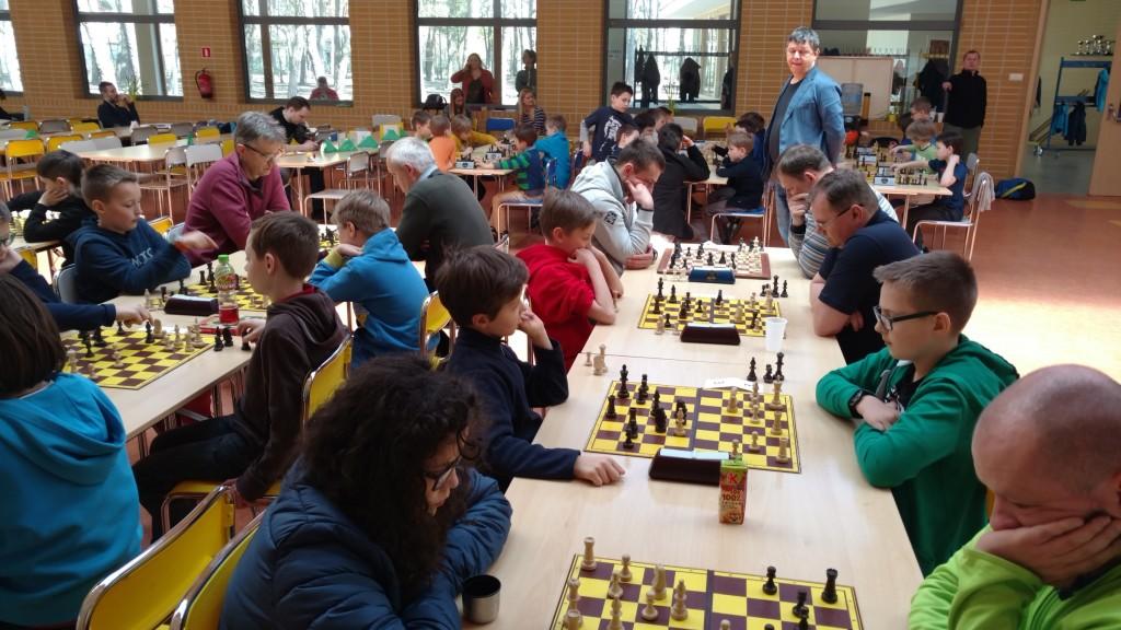 szachy01